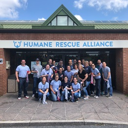 Employees visited the Humane Rescue Alliance to create and distribute dog rope and catnip toys